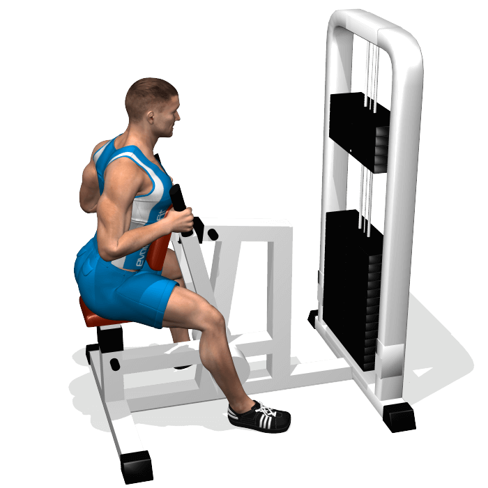 Total Gym X-Force Gym fully assembled- 12 calibrated (elevation) levels The Explore Amazon Devices · Fast Shipping · Deals of the Day · Shop Our Huge Selection.