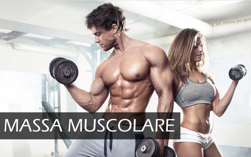 schede e programmi di allenamento massa muscolare