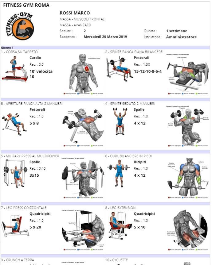 Stampa scheda allenamento mappa muscolare