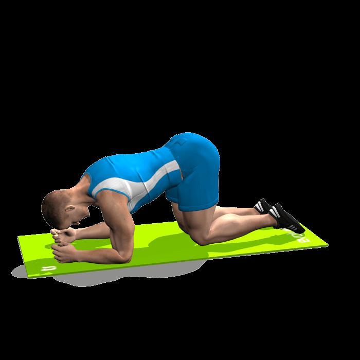 allenamento abduttori slanci esterni gamba piegata in quadrupedia inizio