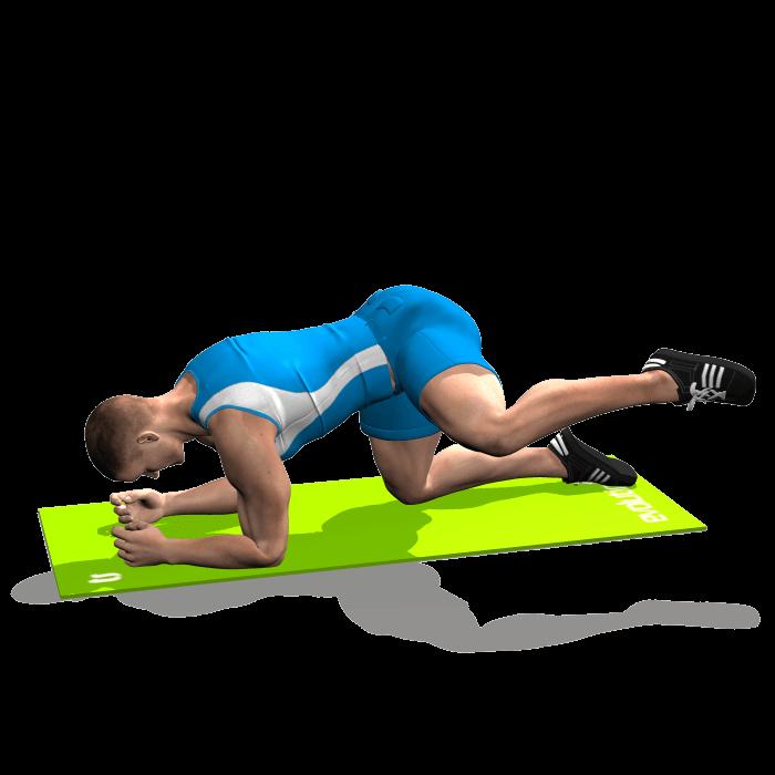 allenamento abduttori slanci esterni gamba piegata in quadrupedia fine
