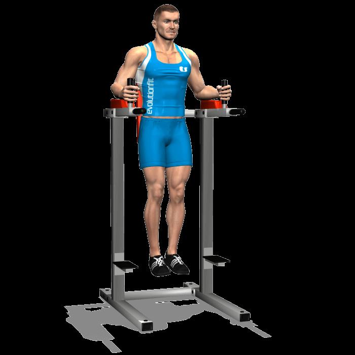 allenamento addominali alzate gambe 90 gradi alle parallele inizio