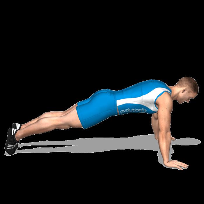 allenamento addominali plank braccia tese inizio