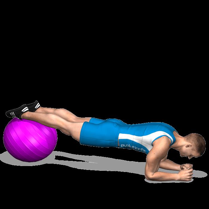 allenamento addominali plank gambe su fitball inizio