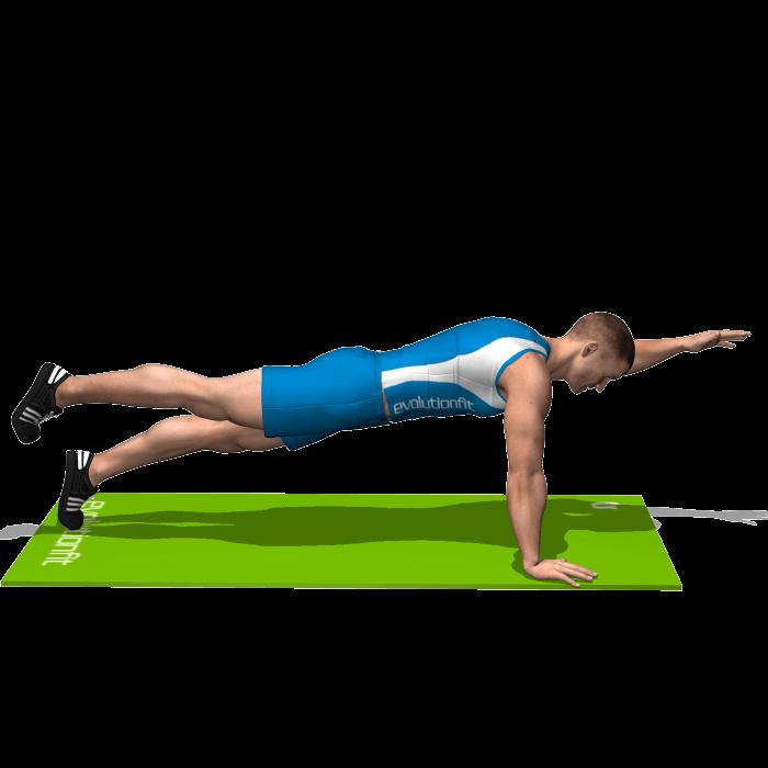 allenamento addominali plank superman fine