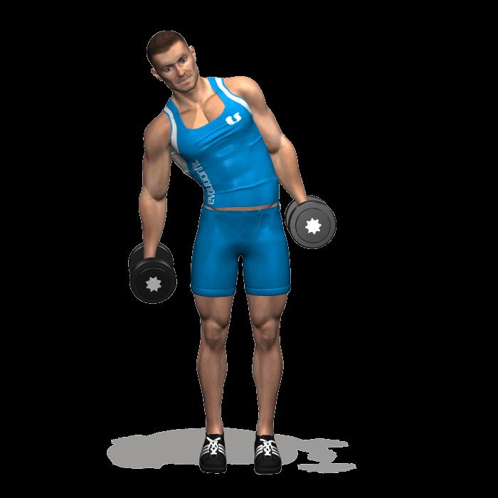 allenamento addominali piegamenti laterali 2 manubri in piedi inizio