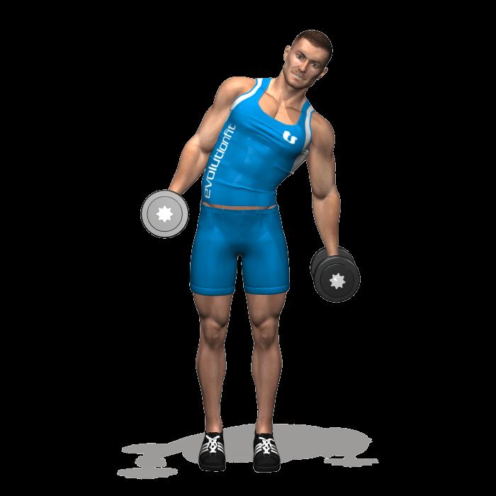 allenamento addominali piegamenti laterali 2 manubri in piedi fine