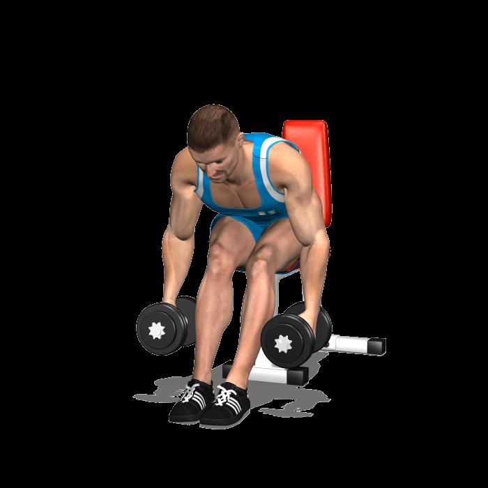 allenamento alzate laterali seduto busto 90 inizio