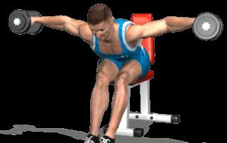 allenamento alzate laterali seduto busto 90 fine
