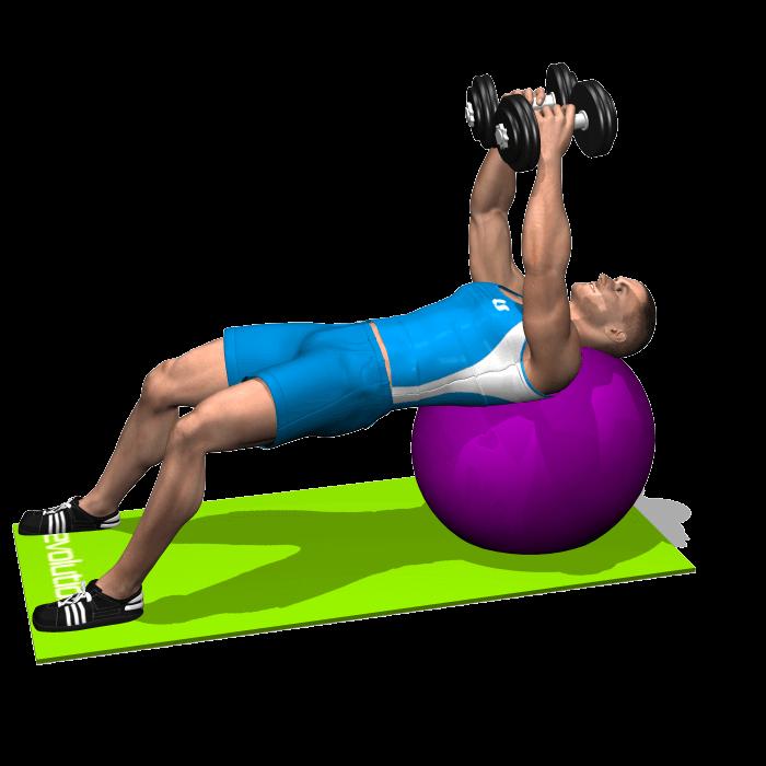 allenamento spalle aperture manubri stability ball inizio