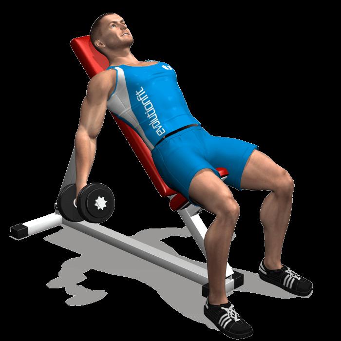 allenamento bicipiti curl manubri seduto panca alta inizio