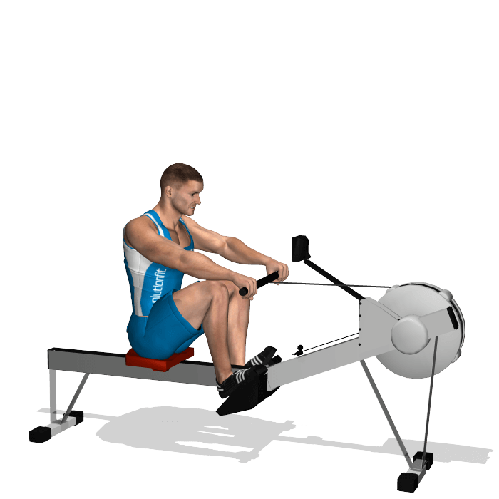 allenamento cardio rowing inizio