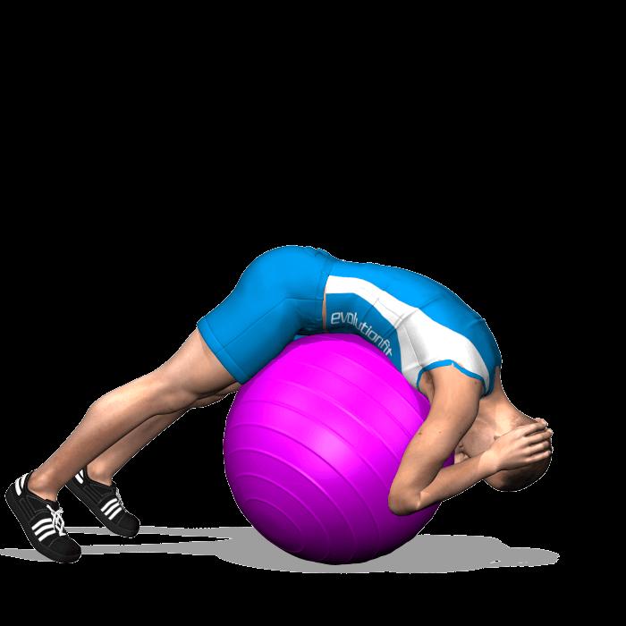dorsali hyperextension alla fitbal, posizione iniziale