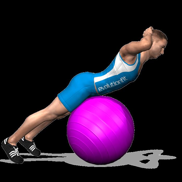 dorsali hyperextension alla fitbal, posizione finale