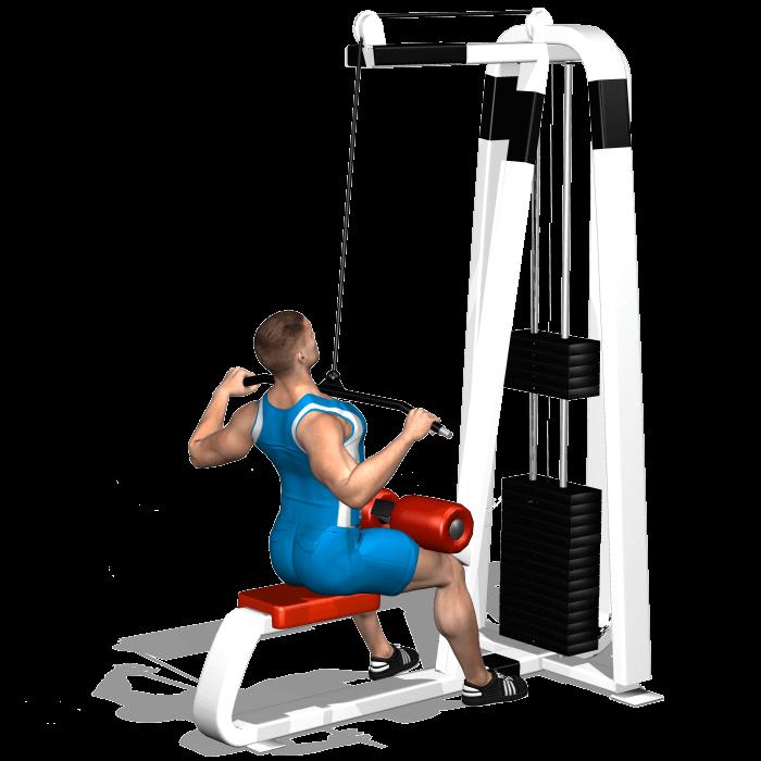 allenamento dorsali lat machine avanti fine