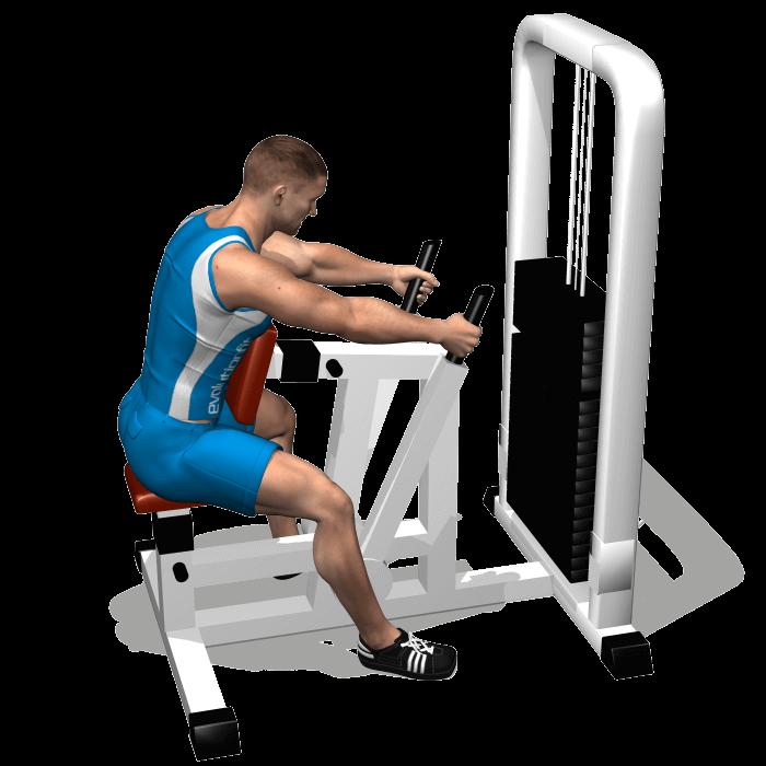 allenamento dorsali low row inizio