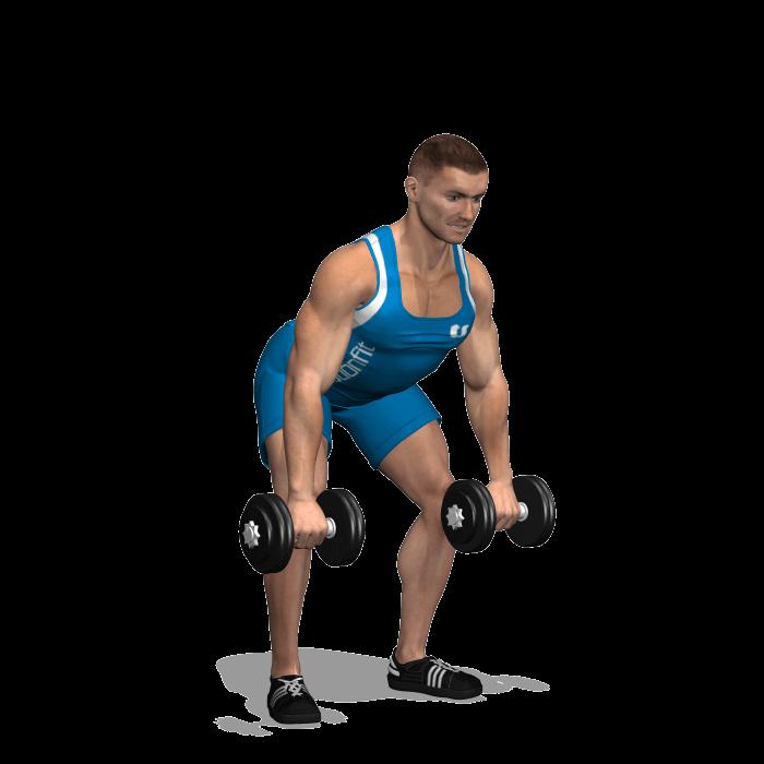 allenamento dorsali rematore 2 manubri inizio