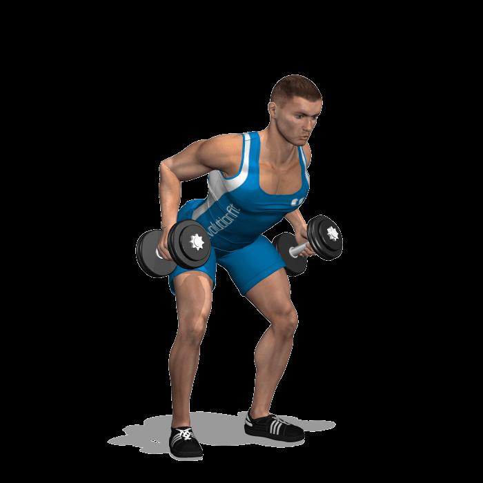 allenamento dorsali rematore 2 manubri fine