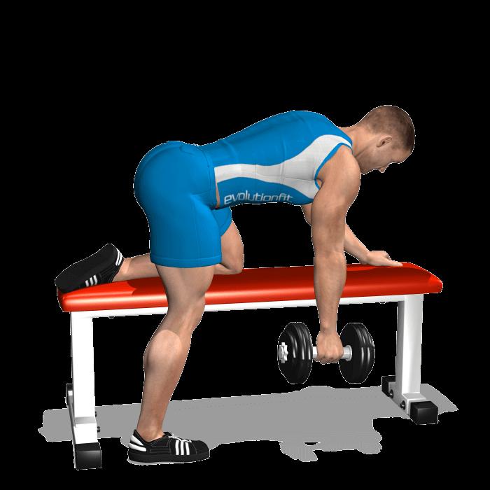 allenamento dorsali rematore manubrio su panca inizio