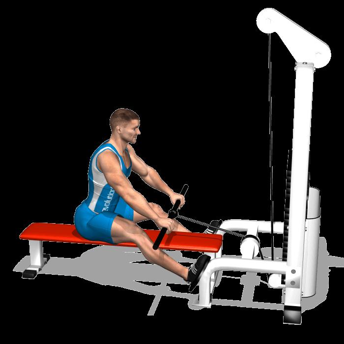 allenamento dorsali trazioni pulley basso inizio