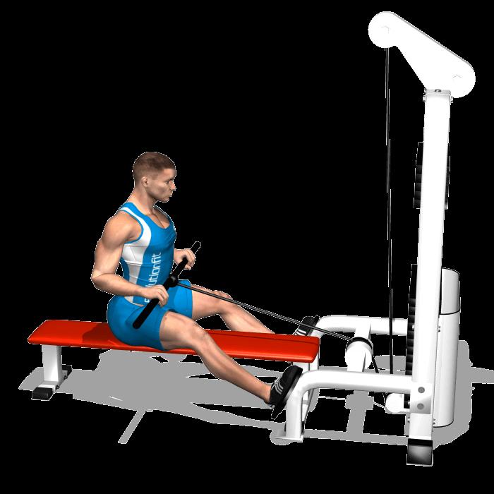 allenamento dorsali trazioni pulley basso fine