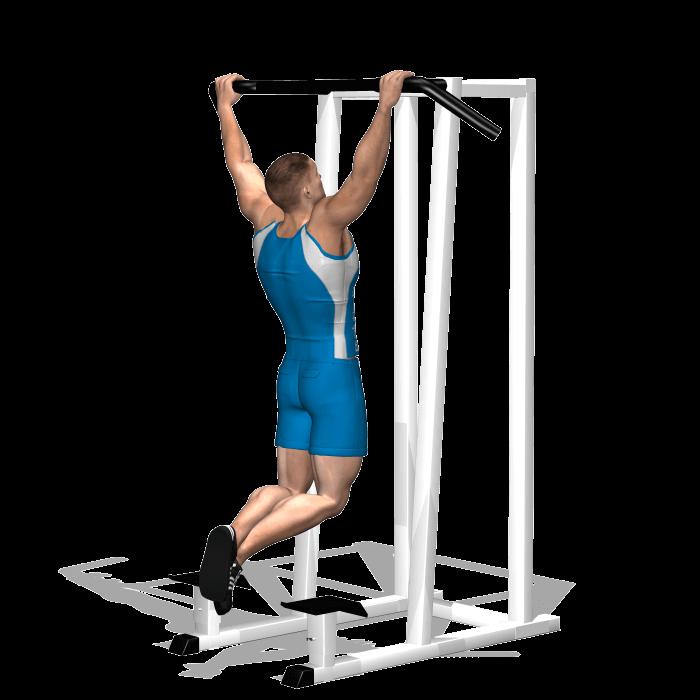 allenamento dorsali trazioni sbarra avanti inizio