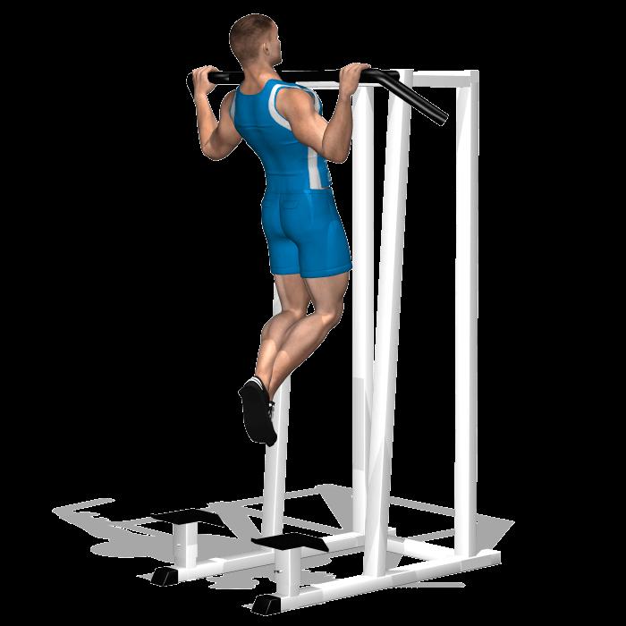 allenamento dorsali trazioni sbarra avanti fine