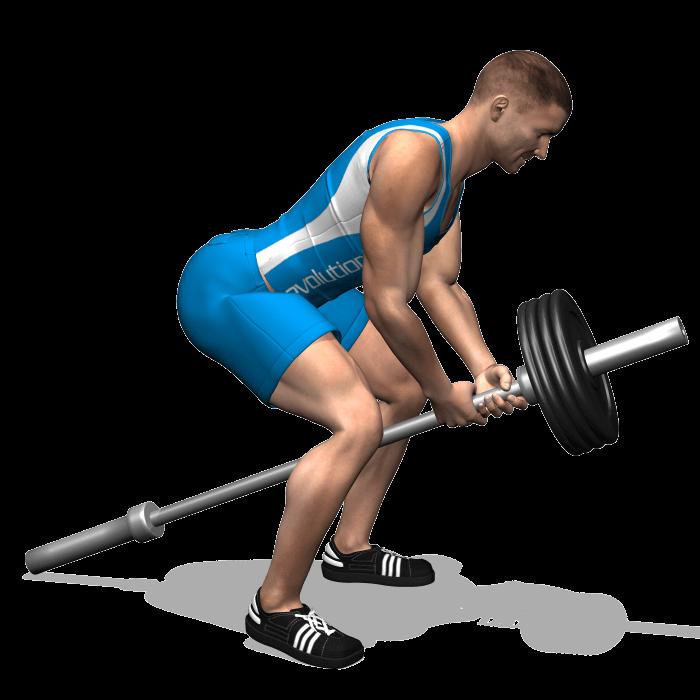 allenamento dorsali trazioni tbar_bilanciere inizio