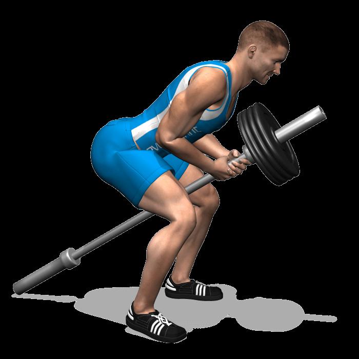 allenamento dorsali trazioni tbar_bilanciere fine