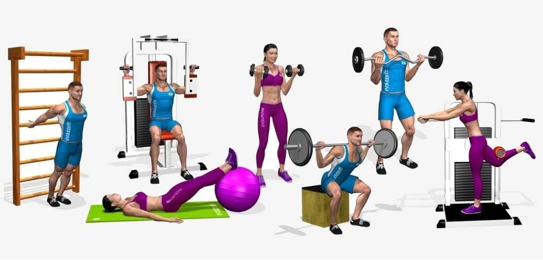 Software schede allenamento evolutionfit for Maschile e femminile esercizi