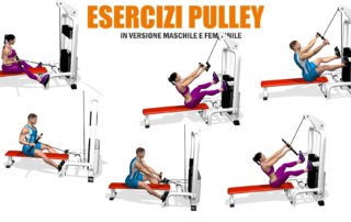 esercizi dorsali pulley evolutionf