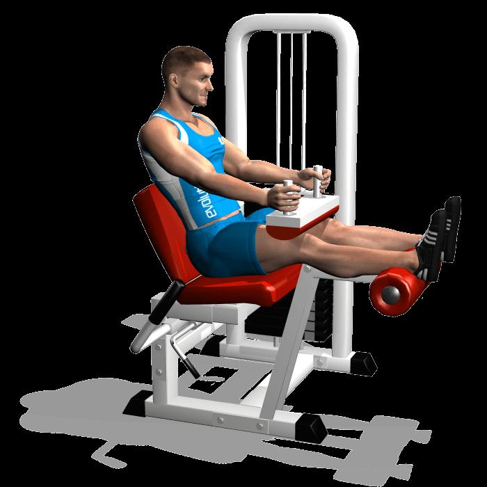 allenamento femorali leg curl seduto inizio
