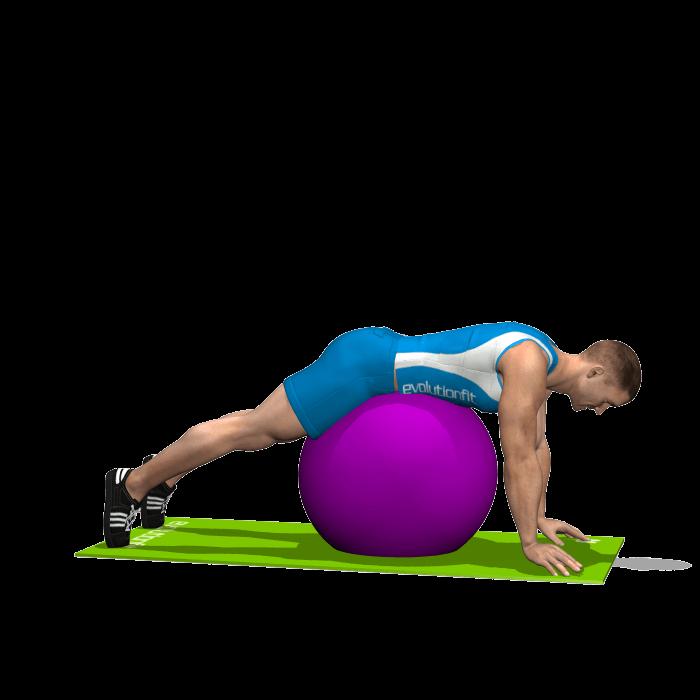 allenamento glutei alzate gambe stability ball inizio