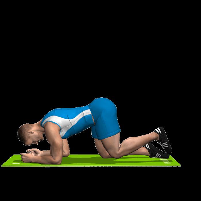 allenamento glutei slanci prono posteriori gamba piegata inizio