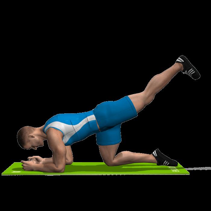 allenamento glutei slanci prono posteriori gamba piegata fine