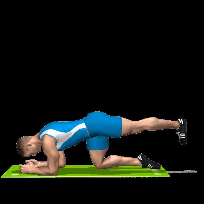 allenamento glutei slanci prono in alto gamba tesa inizio