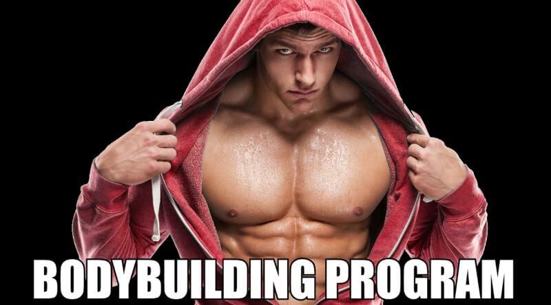guida bodybuilding programm