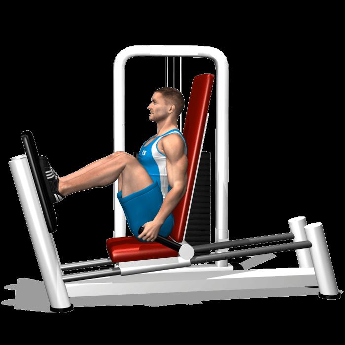 allenamento quadricipite leg press orizontale inizio