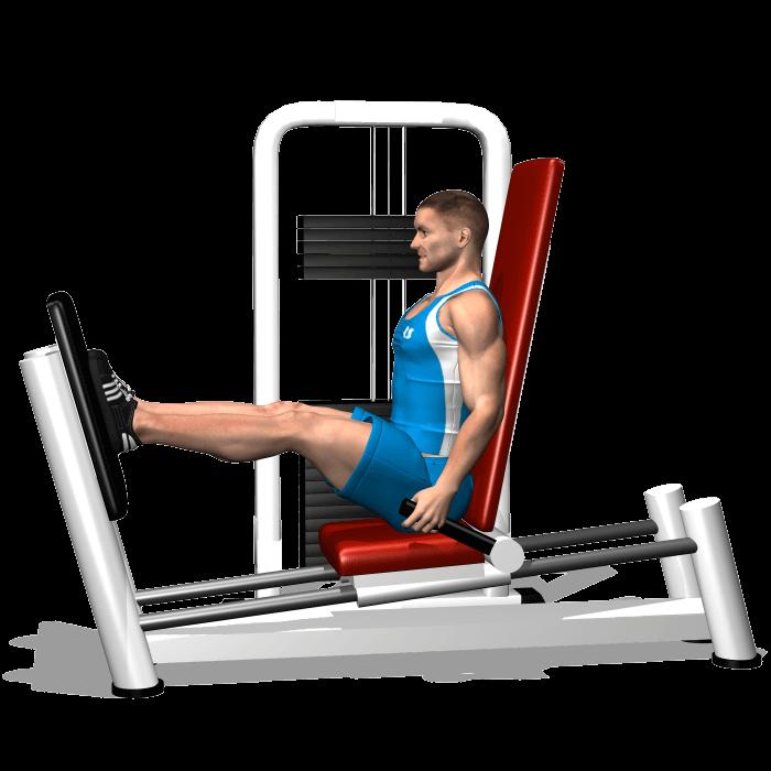 allenamento quadricipite leg press orizontale fine