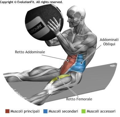 mappa muscolare addominali crunch con wallball
