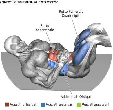 mappa muscolare addominali crunch inverso a terra