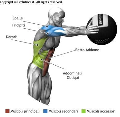 mappa muscolare addominali lancio wallball in avanti