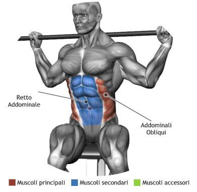 mappa muscolare addominali rotazione bastone seduto