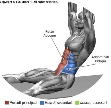 mappa muscolare addominali russian situp