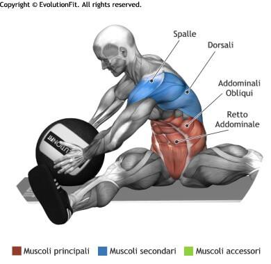 mappa muscolare addominali torsioni seduto con wallball