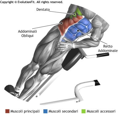 mappa muscolare addominali crunch hyperextension