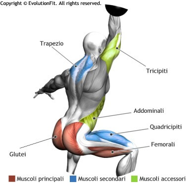 mappa muscolare total body clean and press jerk con kettlebell