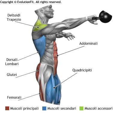 mappa muscolare total body swing singolo kettlebell