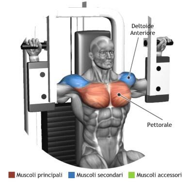 muscoli allenamento chiusure pectoral machine