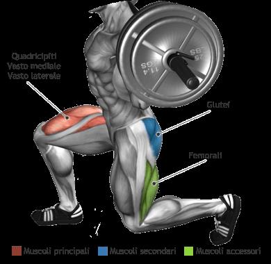 mappa muscolare quadricipiti glutei affondi statici bilanciere